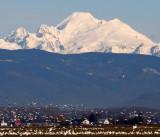 WASHINGTON - MOUNT BAKER VIEW FROM MOUNT VERNON AREA (3).jpg