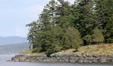 WASHINGTON - SAN JUAN ISLANDS - FRIDAY HARBOR (9).JPG