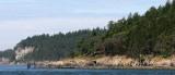 WASHINGTON - SAN JUAN ISLANDS - LOPEZ ISLAND FOREST (2).JPG