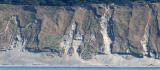 WASHINGTON - WHIDBEY ISLAND GLACIAL TILL (2).JPG