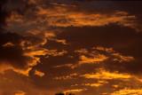 ARIZONA - MADERA CANYON - SUNSET A.jpg