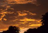 ARIZONA - NOGALES SUNSET.jpg