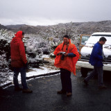 JOSHUA TREE - SNOW WITH MARDA WEST.jpg