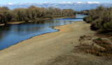 AMERICAN RIVER - RIPARIAN ZONE IN WINTER.jpg