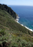 CALIFORNIA - BIG SUR - COAST VISTA A.jpg