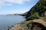 CALIFORNIA - CHANNEL ISLANDS NP - ANACAPA ISLAND (2).jpg