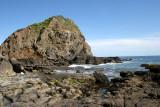 CALIFORNIA - CHANNEL ISLANDS NP - ANACAPA ISLAND - GEOLOGY (3).jpg
