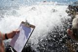CALIFORNIA - CHANNEL ISLANDS NP - ANACAPA ISLAND - Splash - natural hazards.jpg