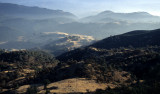 CALIFORNIA - MOUNT DIABLO - VIEW OF OAK WOODLANDS B (3).jpg