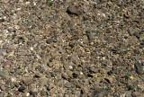 DEATH VALLEY - DESERT PAVEMENT.jpg
