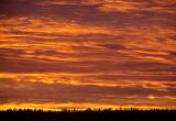 ANASAZILAND - MESA VERDE NP - SUNSET IN WINTER (2).jpg