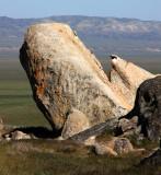 CARRIZO PLAIN NATIONAL MONUMENT - SELBY ROCKS - ROADTRIP 2010 (4).JPG
