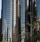 2010-4-5 LOS ANGELES (6).JPG