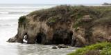 ANO NUEVO SPECIAL RESERVE CALIFORNIA - SPRING ROAD TRIP 2010 5.JPG