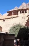 Burning Bush, St Catherines Monastery, Sinai