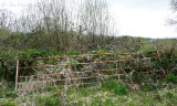 Hedge gate