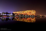 Bird's Nest at Night