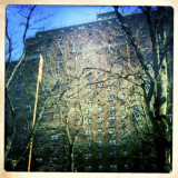 Apartment Block and Trees