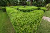 Maze (P1000918)