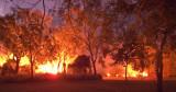 Bushfire, Pallarenda R0011827
