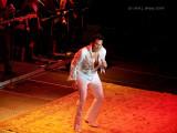 Tony Roi The Elvis Experience.jpg