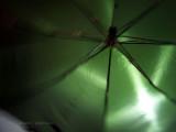 Umbrella Action!