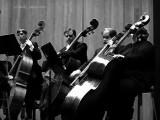 Louisville Orchestra Warming Up.