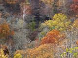 Clifty Falls Park