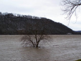 High Water on the Ohio River.
