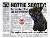 New York Post Sadie Story