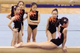Singapore Gymnastics Open Championships 2008
