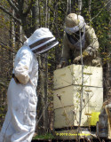 Roz and Mike with Bee Hive