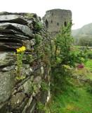 Dolbadarn Castle in heavy rain - 1