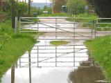 A  farm  gate, in reflection - 1