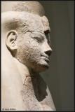 Egyptian 6