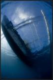 Kasai boat 2