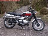 Triumph_Scrambler_900_static 056r.JPG