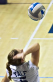 Yale Women's Volleyball 2007