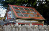 D50-2007-11-13_071.jpg