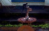 D50-2008-03-27_003x.jpg