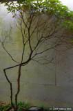 D50-2008-03-27_087x.jpg