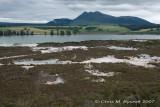 Scrub, Lake Rotokawa and Mt Tahaura behind