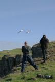 Me shooting Fulmar at St Abbs Head, Scotland