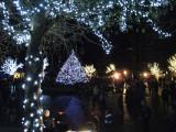 Christmas at Predator Ridge