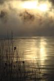 Sun Fog Ice2.jpg