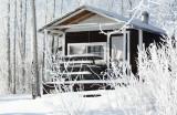 Cabin in Woods.jpg