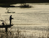Stellako Fisherman.jpg