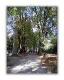 Promenade du Pasquart