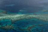 Great coral barrier 2.