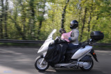 How to carry a dog on a motorcycle